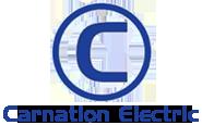 Carnation Electric Motor | Alliance, Ohio